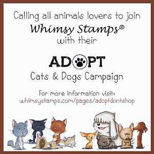 Adopt Cats & Dogs Campaign