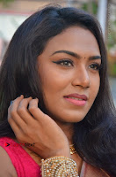 Actress Risha Pos in Pink Silk Saree at Saravanan Irukka Bayamaen Tamil Movie Press Meet  0003.jpg