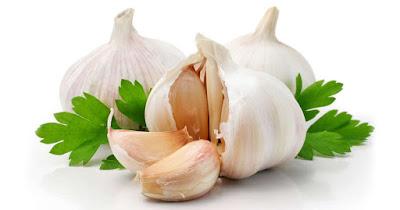 Garlic for Obesity Treatment