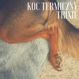 http://otojanka.blogspot.com/2016/07/jak-sobie-poscielesz-czyli-pies-i-jego.html
