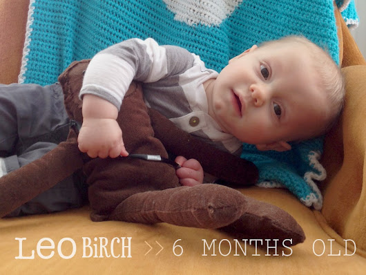 oh, hopscotch!: leo birch :: 6 months