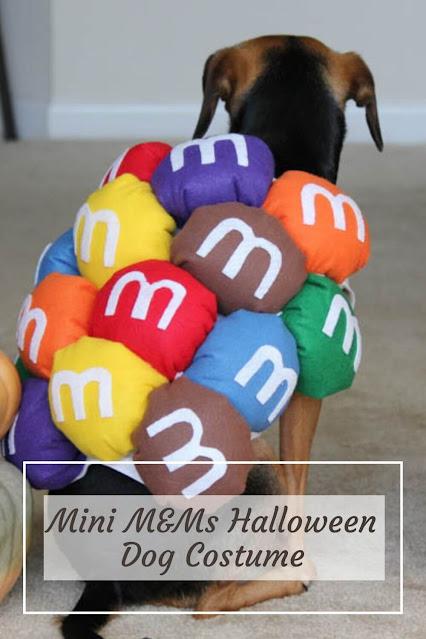 Mini M&Ms Halloween Dog Costume