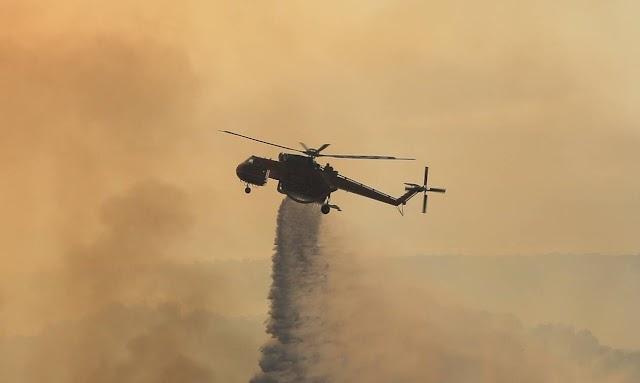 Πυρκαγιά σε δάσος στη Καστανιά της ανατολικής Μάνης