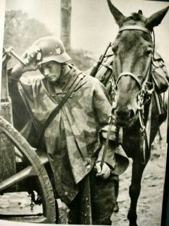 German relied on their horses and wagons worldwartwo.filminspector.com