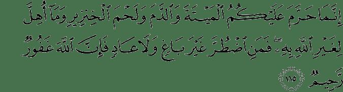 Surat An Nahl Ayat 115
