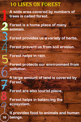 Short Few Lines Essay on Forest