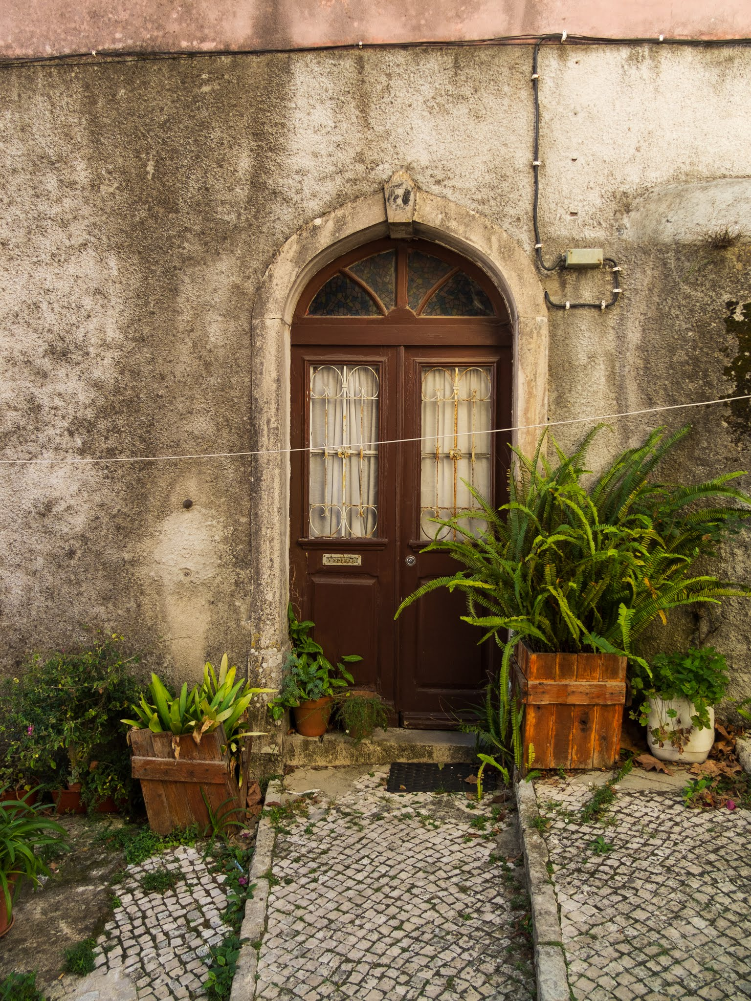 A brown doorway with plant pots on the hillside in Sintra, Portugal.