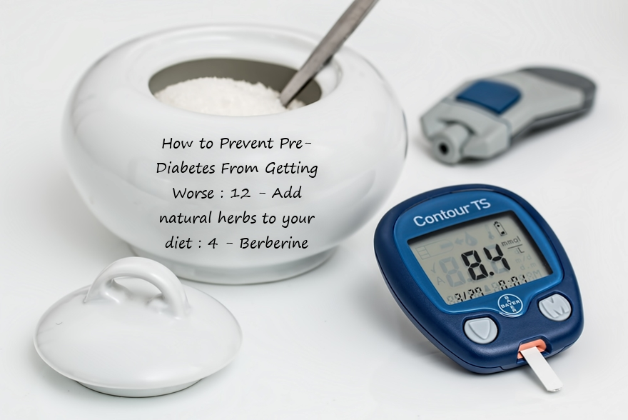 How to Prevent Pre-Diabetes From Getting Worse : 12 - Add natural herbs to your diet : 4 - Berberine