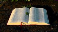 +50 Versículos Bíblicos de Ânimo