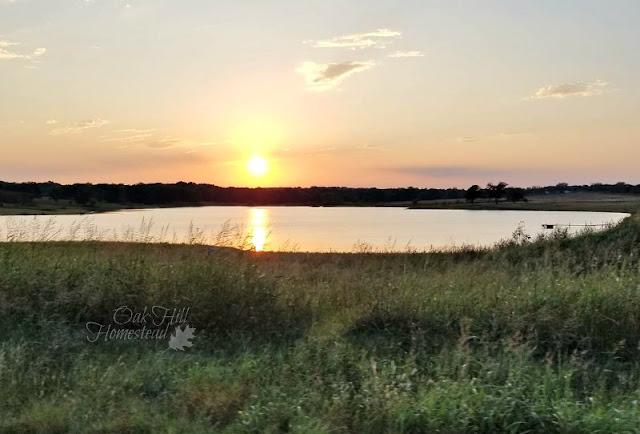 Sunset behind a pond.
