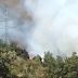 Incendio en Ruta a Laguna del Maule
