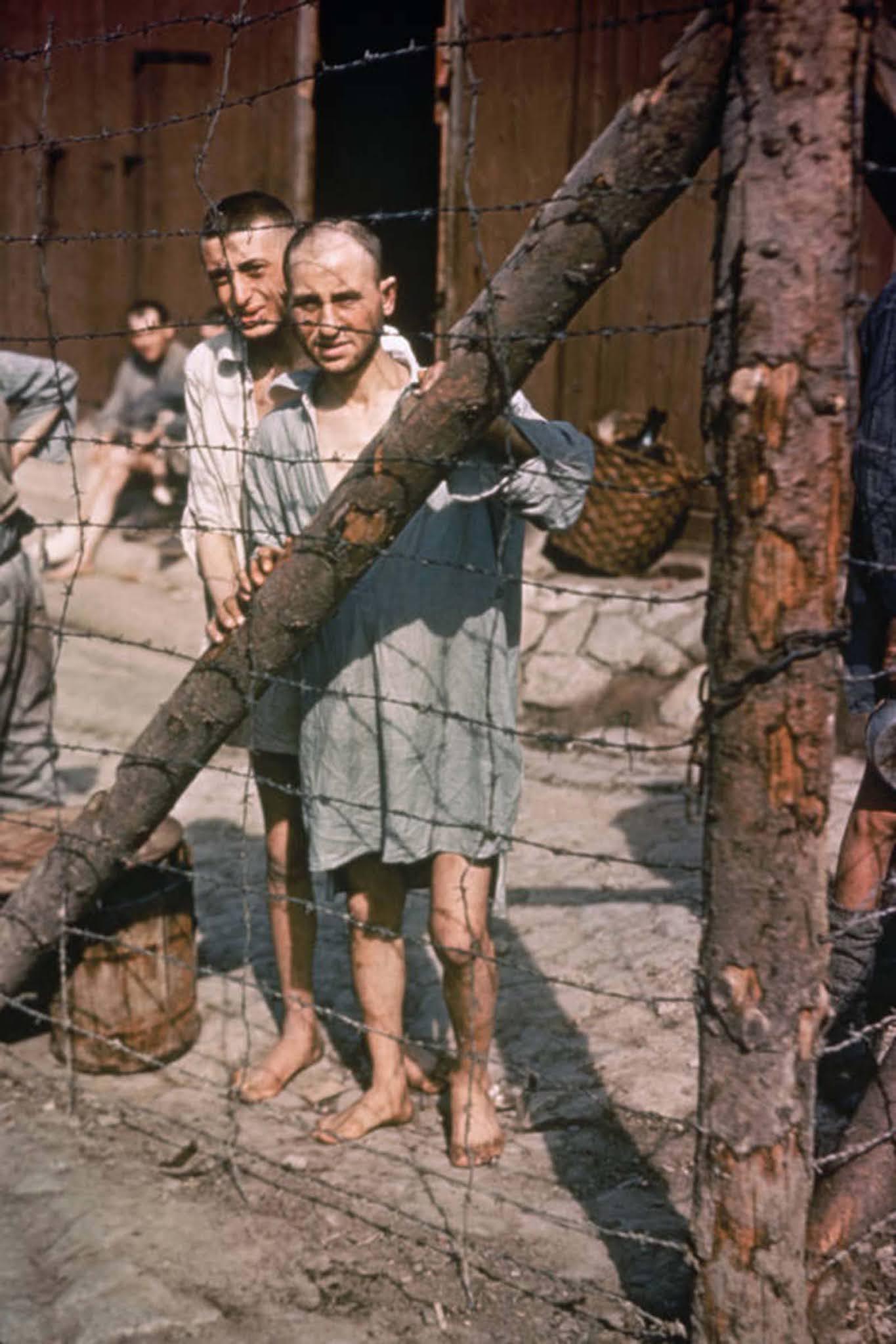 A buchenwaldi koncentrációs tábor két foglya.  1945.