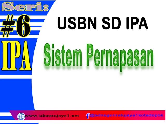 USBN SD IPA tentang sistem Pernapasan