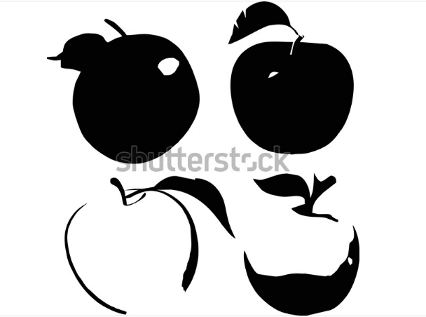 illustrator design vector