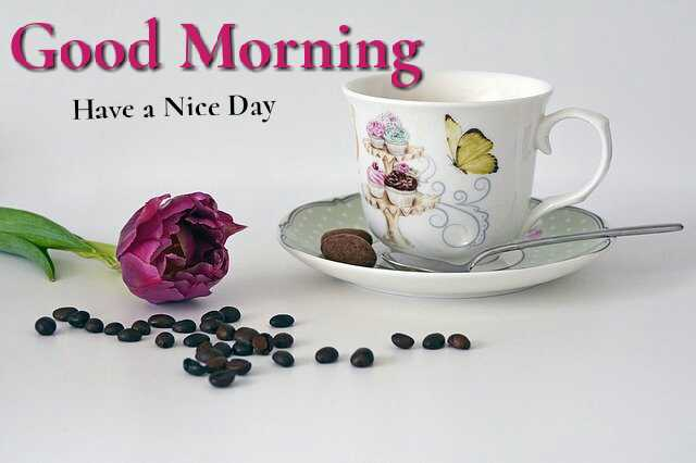 Awesome Good Morrning image with coffee cup and pink rose flower have a nice day