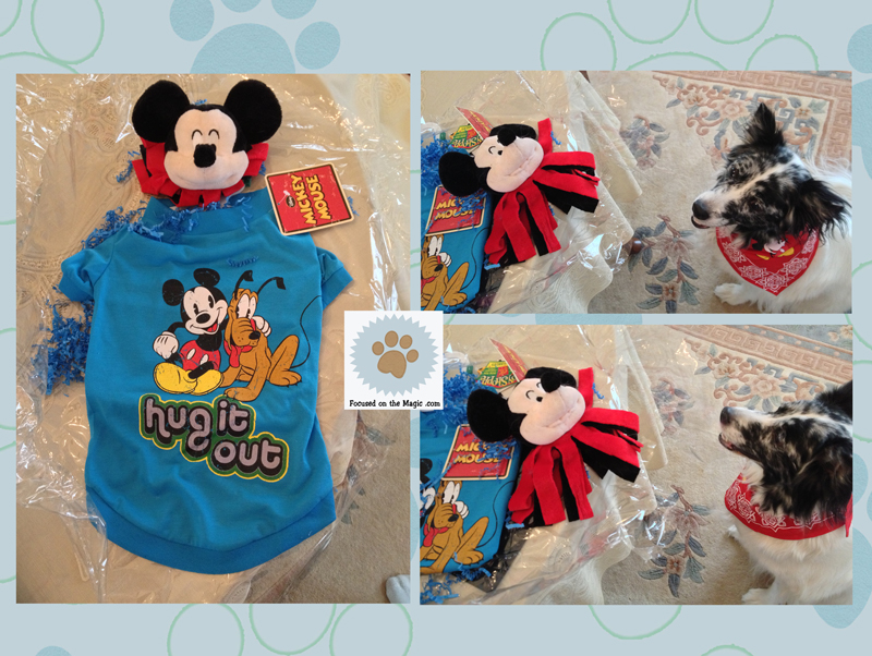 New PetSmart Disney Apparel and Toy Line