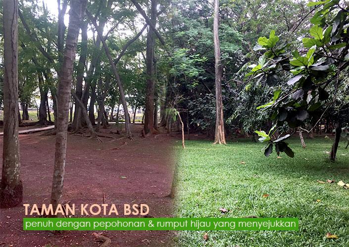Pepohonan Di Taman Kota BSD