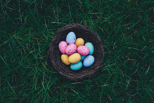 different shapes of eggs photo credit :: https://unsplash.com/@anniespratt