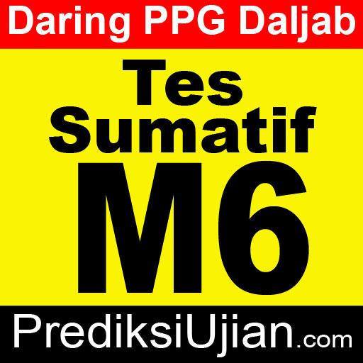Jawaban Sumatif M6 Profesional - English at Work Place