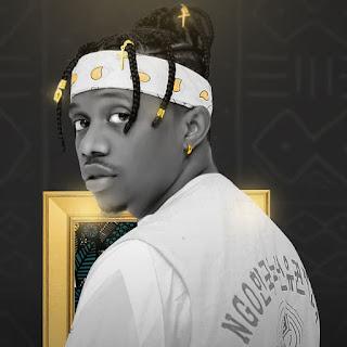 AUDIO | Rayvanny ft Busiswa & Baba levo  - Zipo | Mp3 Download