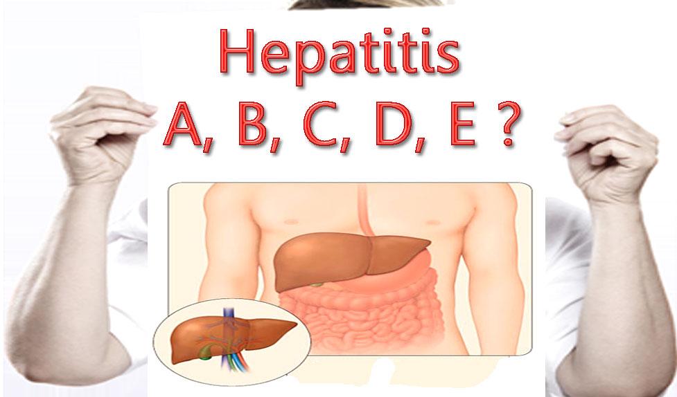 Obat Herbal Penyakit Hepatitis