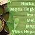 Cara Elak Hepatitis C Menggunakan Formula Tradisional Jepun