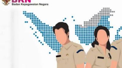 Ini Jadwal dan Rincian Formasi Pendaftaran CPNS di Kabupaten Bone 2019