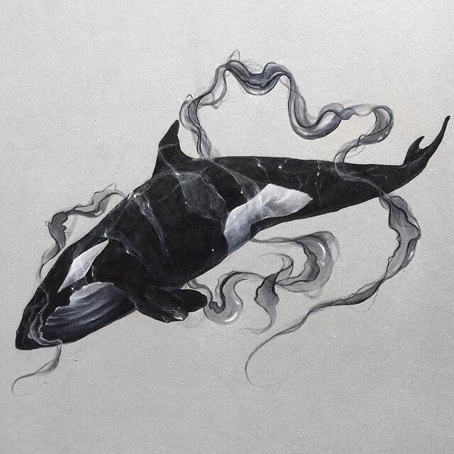 02-Orca-Killer-Whale-SW-Whiteside-www-designstack-co