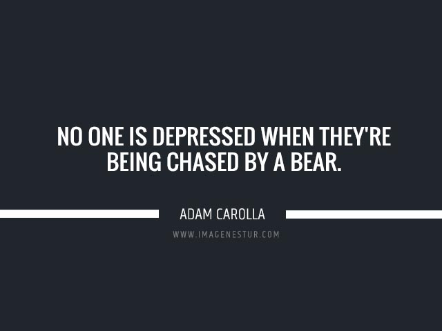 Depression quotes No one is depressed when they're being chased by a bear.