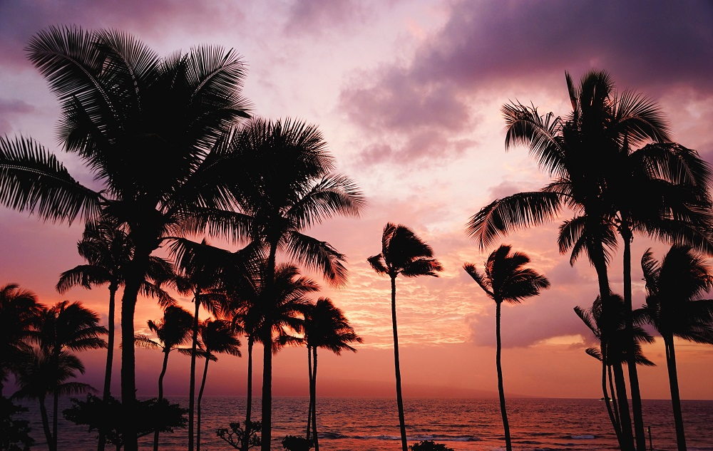 Sunset over the ocean in Fiji