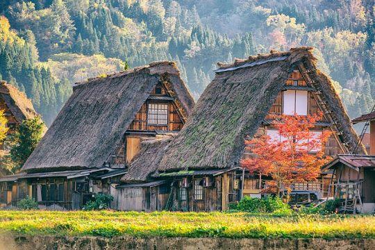 Gassho-zukuri di Ogimachi, Shirakawa-go