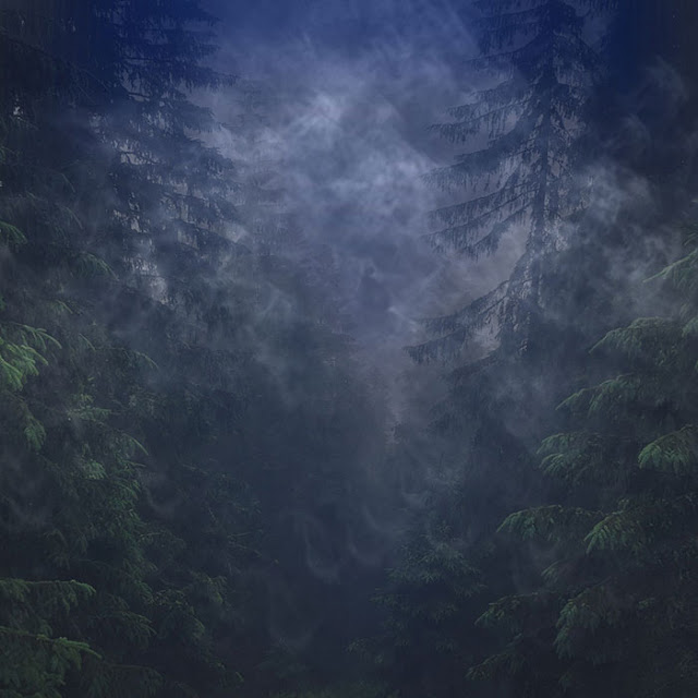 Dark Forrest Wallpaper Engine