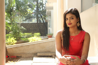 Telugu Actress Anusha Stills at Dhyavudaa Movie Teaser Launch  0101.JPG