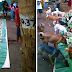 Special Boodle Fight For Native Dogs Wows Netizens