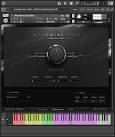 Download Native Instruments Symphony Series Woodwind Solo KONTAKT Library