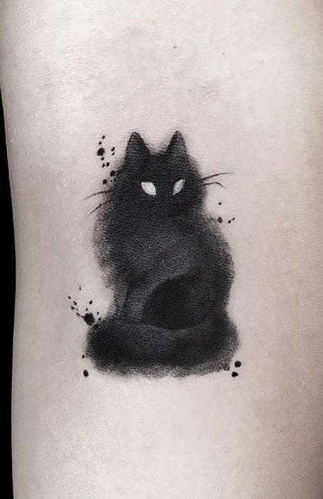 Tato Kucing