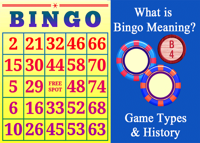 What is Bingo Meaning? Game Types and History