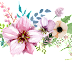 Water Colour Flower PNG 15
