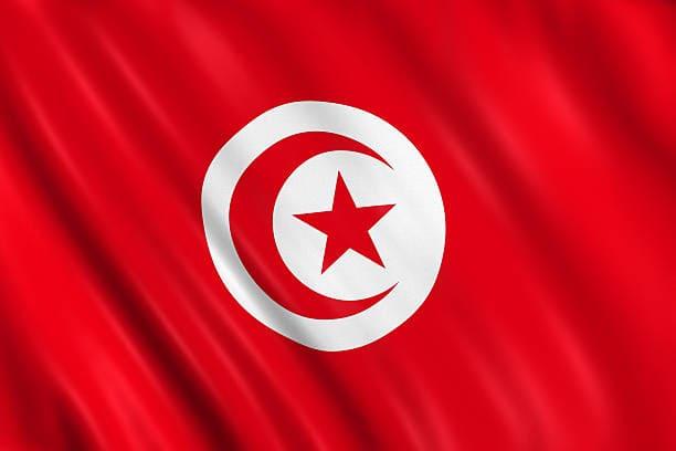 الحجر الصحي بتونس