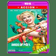 Aves de presa (y la fantabulosa emancipación de una Harley Quinn) (2020) WEB-DL 2160p Latino
