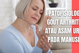 Patofisiologi Gout Arthritis atau Asam Urat Pada Manusia