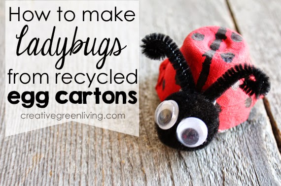 How To Make Ladybugs From A Recycled Egg Carton Creative Green
