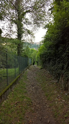 The last bit of trail 533 before dropping onto pavement in Bergamo (Quintino Alto)