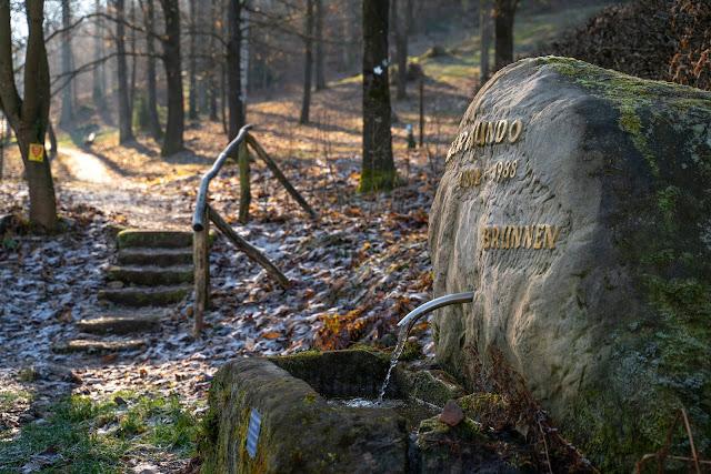 Richard-Löwenherz-Weg  Annweiler am Trifels  Wandern Südliche Weinstraße  Wanderung Pfälzerwald 10
