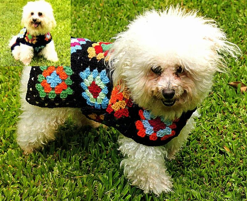 Capa de crochet para su mascota ~ Dos Agujas y Crochet