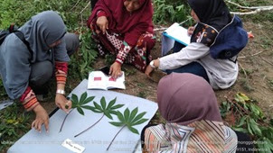 Empat Varietas Lokal Ubi Kayu (Monihot Esculenta) Kabupaten Bintan, Sebagai Sumberdaya Genetik yang Perlu Dilestarikan