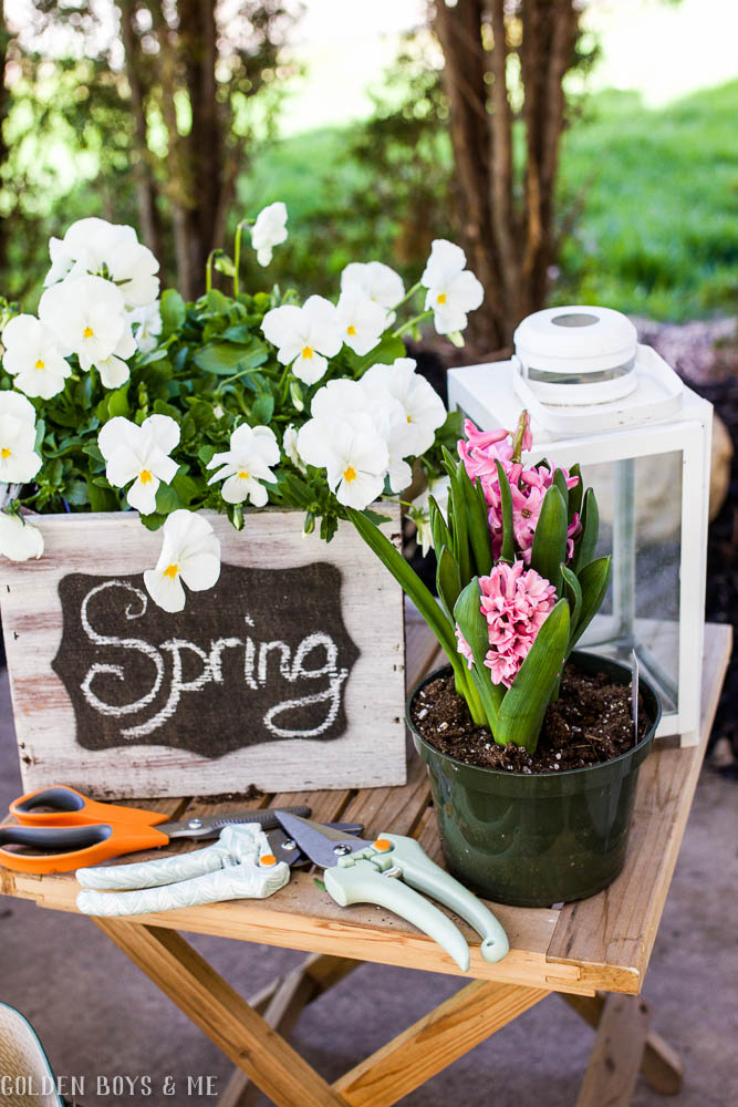 Spring gardening tools for potting