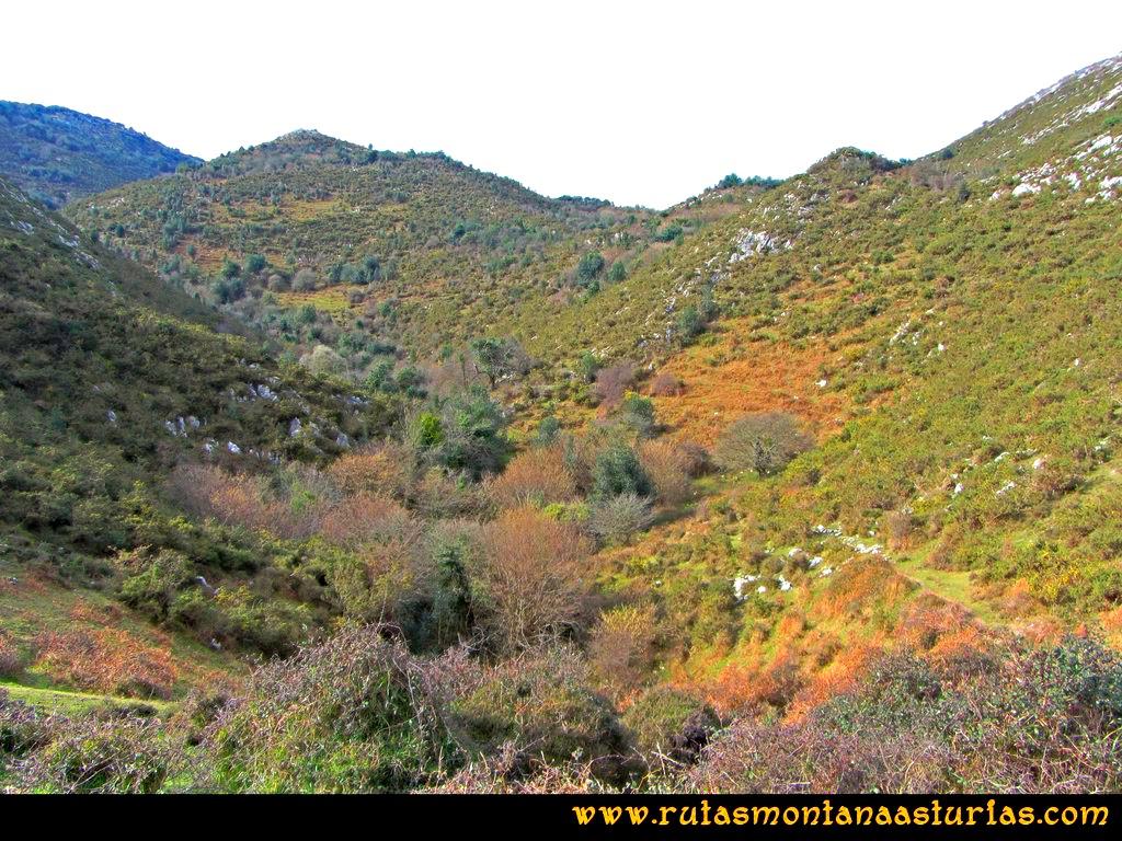 Ruta Montaña al Pienzu: Valle arriba, con bastante vegetación