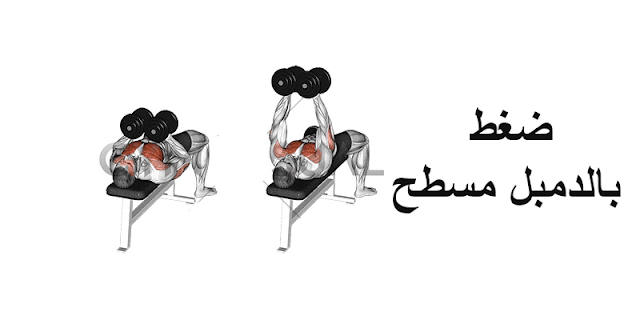 أقوي 10 تمارين تضخيم عضلات الصدر فى أسرع وقت 2021