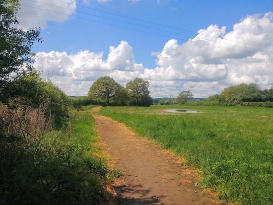 Wymondley footpath 15 heading SW from point 2